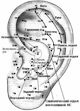 воздействия на точки уха,